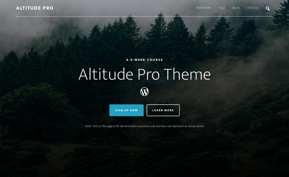 Icono de búsqueda en la cabecera de Altitude Pro Theme