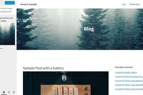 Imagen de cabecera en el blog vía personalizador en Genesis Sample