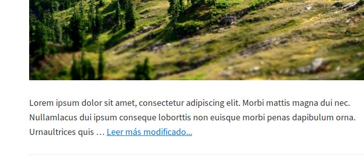 """Texto del enlace """"Leer más"""" modificado"""