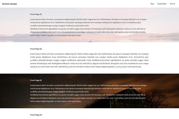 Página de inico con áreas de Widgets en Genesis Sample