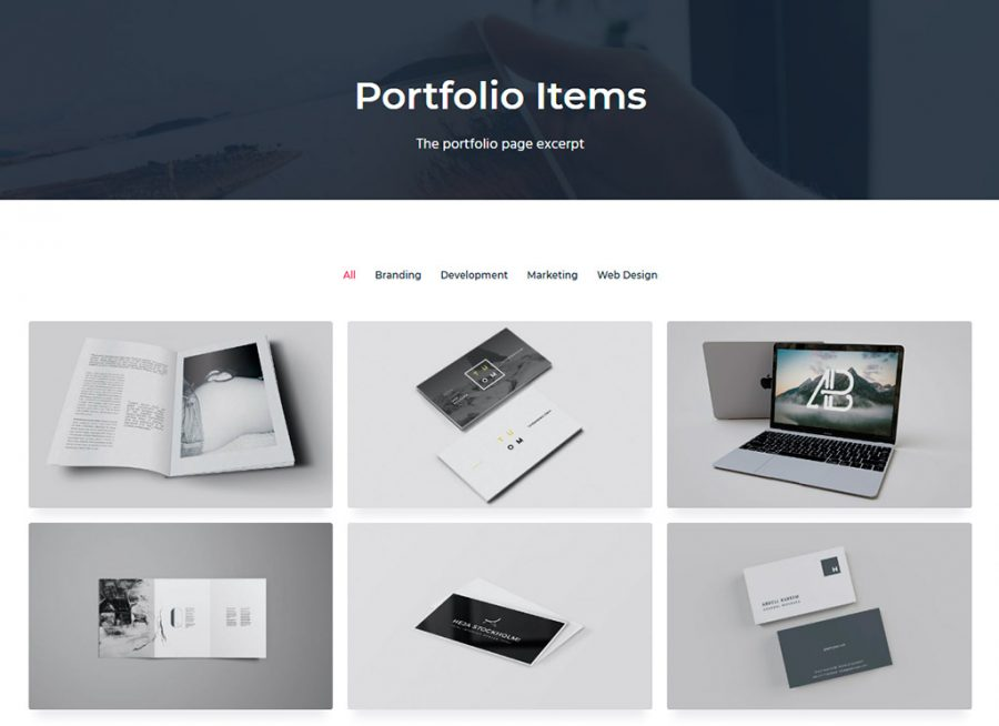 Portfolio en Business Pro theme