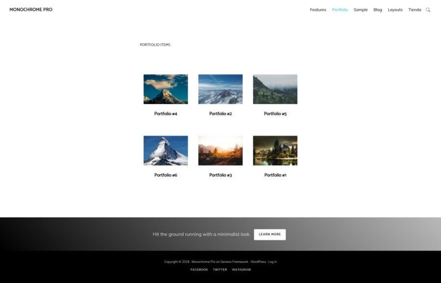 Genesis Portfolio Pro en Monochrome pro