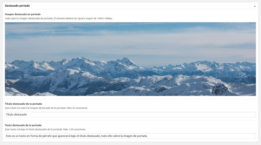 Rellenamos los campos personalizados en la página de inicio